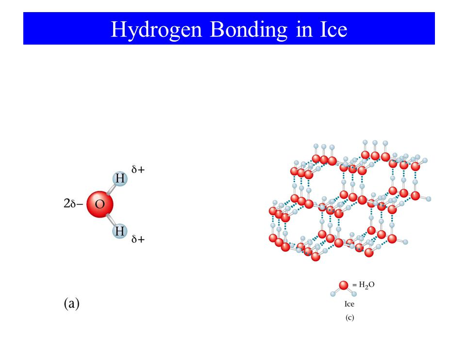 Hydrogen Bonding in Ice