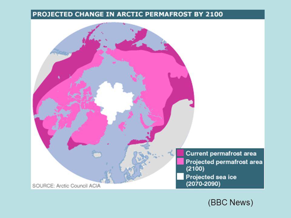 (BBC News)