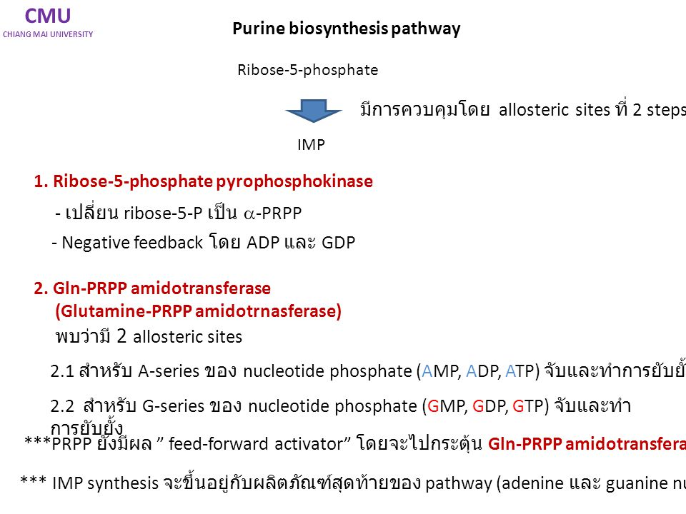 CMU Purine biosynthesis pathway