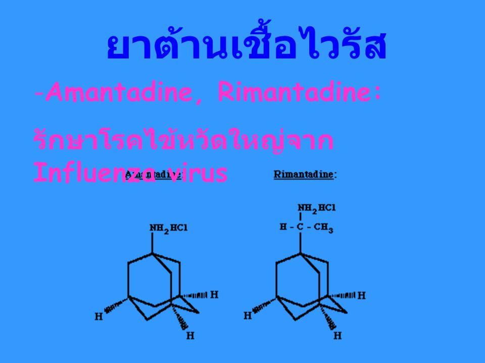 ยาต้านเชื้อไวรัส Amantadine, Rimantadine: