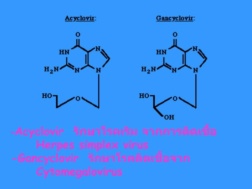 -Acyclovir รักษาโรคเริม จากการติดเชื้อ
