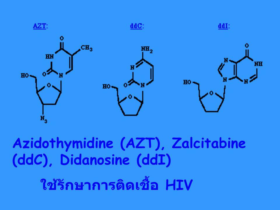 Azidothymidine (AZT), Zalcitabine (ddC), Didanosine (ddI)