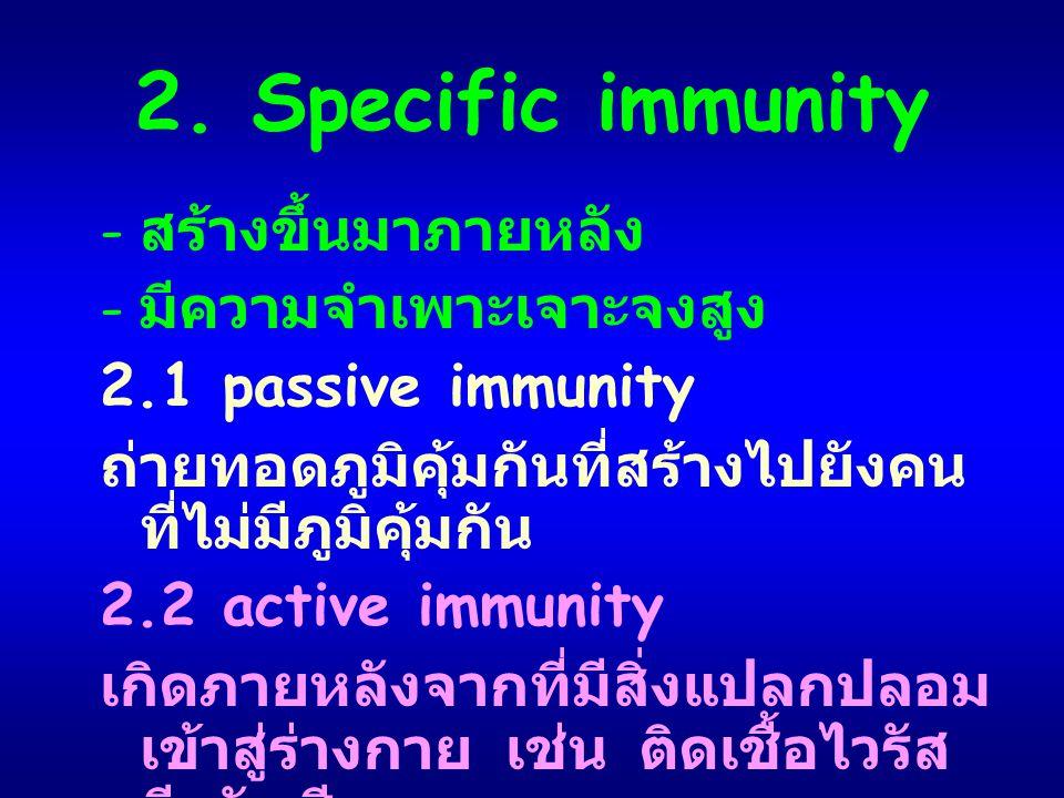 2. Specific immunity สร้างขึ้นมาภายหลัง มีความจำเพาะเจาะจงสูง