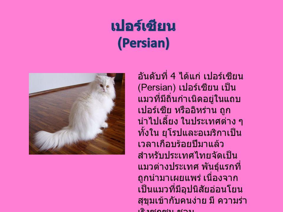 เปอร์เซียน (Persian)