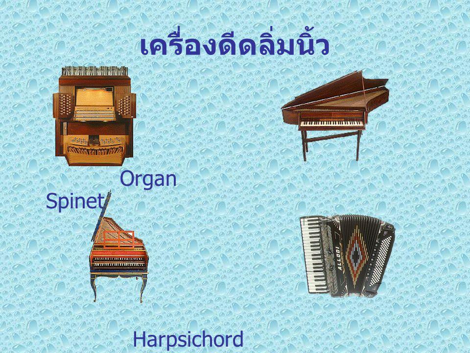 เครื่องดีดลิ่มนิ้ว Organ Spinet.