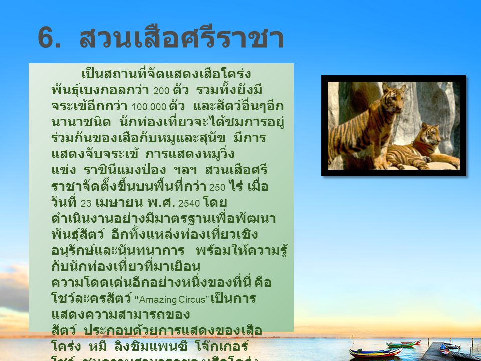 6. สวนเสือศรีราชา