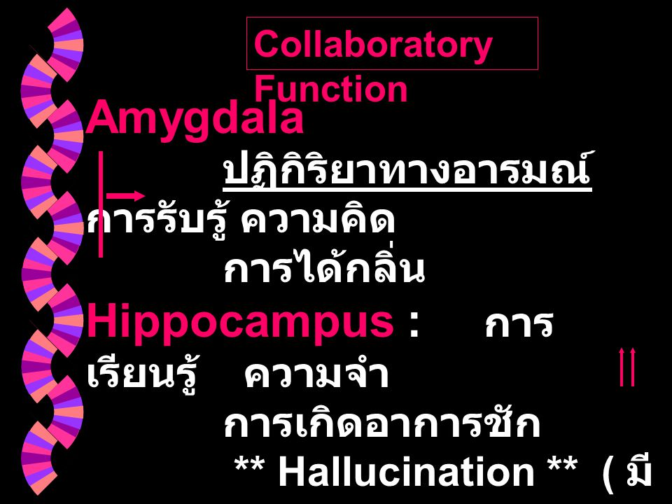 Collaboratory Function