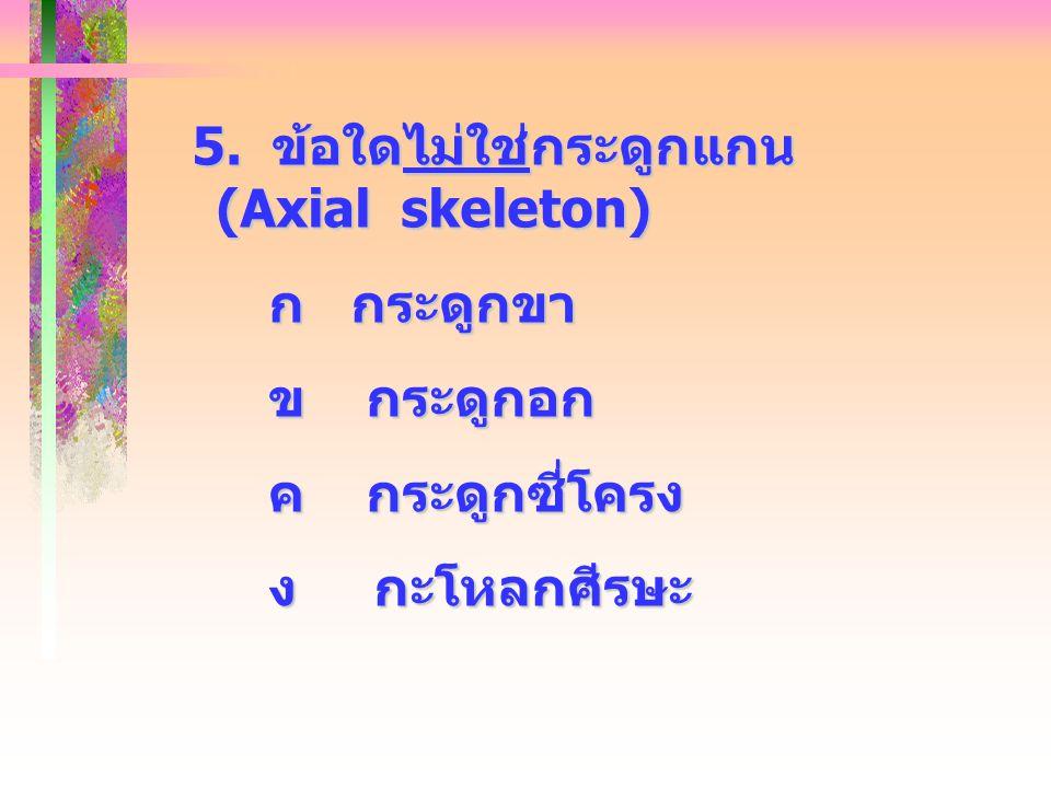 5. ข้อใดไม่ใช่กระดูกแกน (Axial skeleton)