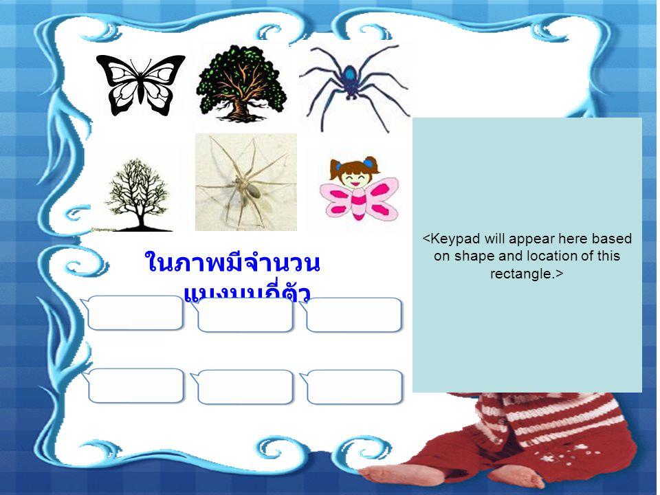 ในภาพมีจำนวนแมงมุมกี่ตัว