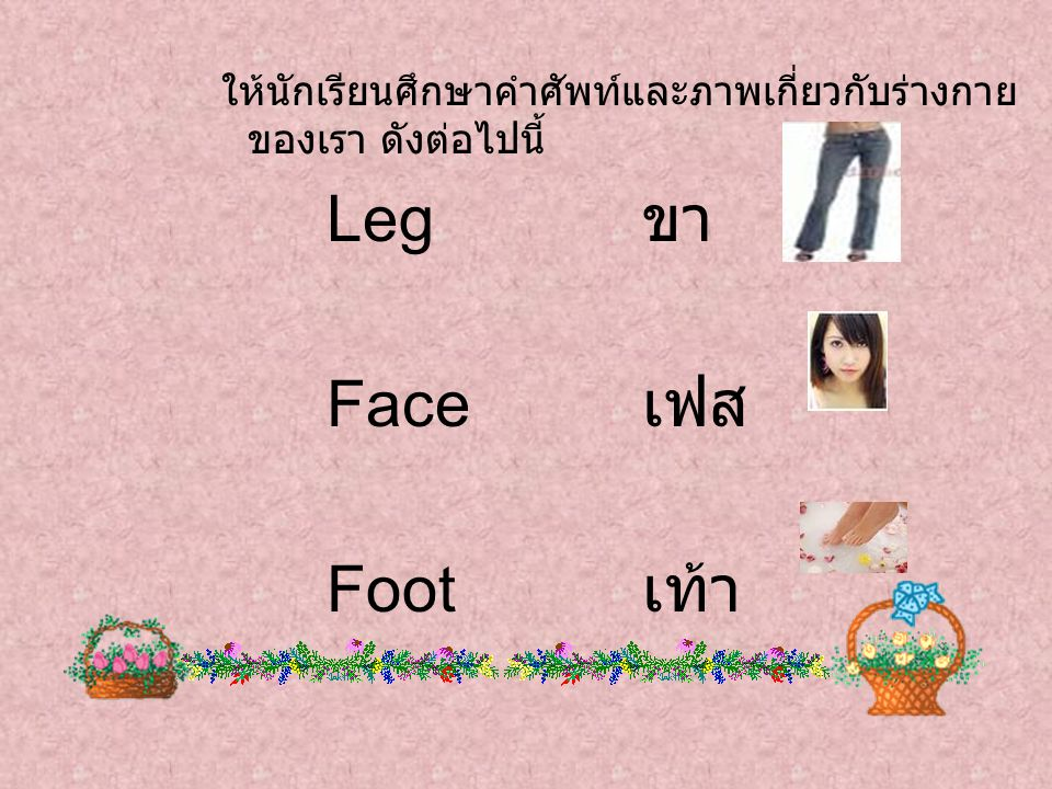 Leg ขา Face เฟส Foot เท้า