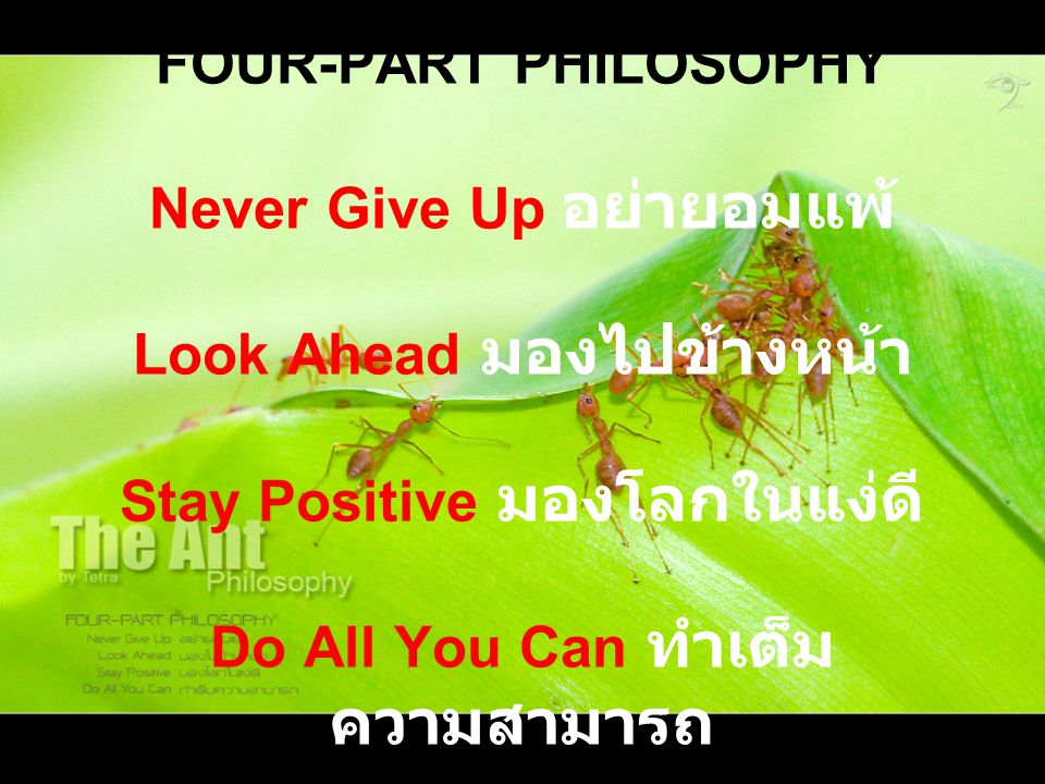 FOUR-PART PHILOSOPHY Never Give Up อย่ายอมแพ้ Look Ahead มองไปข้างหน้า Stay Positive มองโลกในแง่ดี Do All You Can ทำเต็มความสามารถ