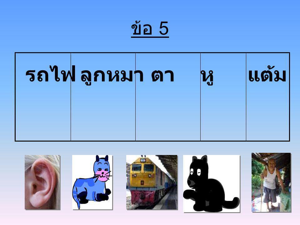 ข้อ 5 รถไฟ ลูกหมา ตา หู แต้ม