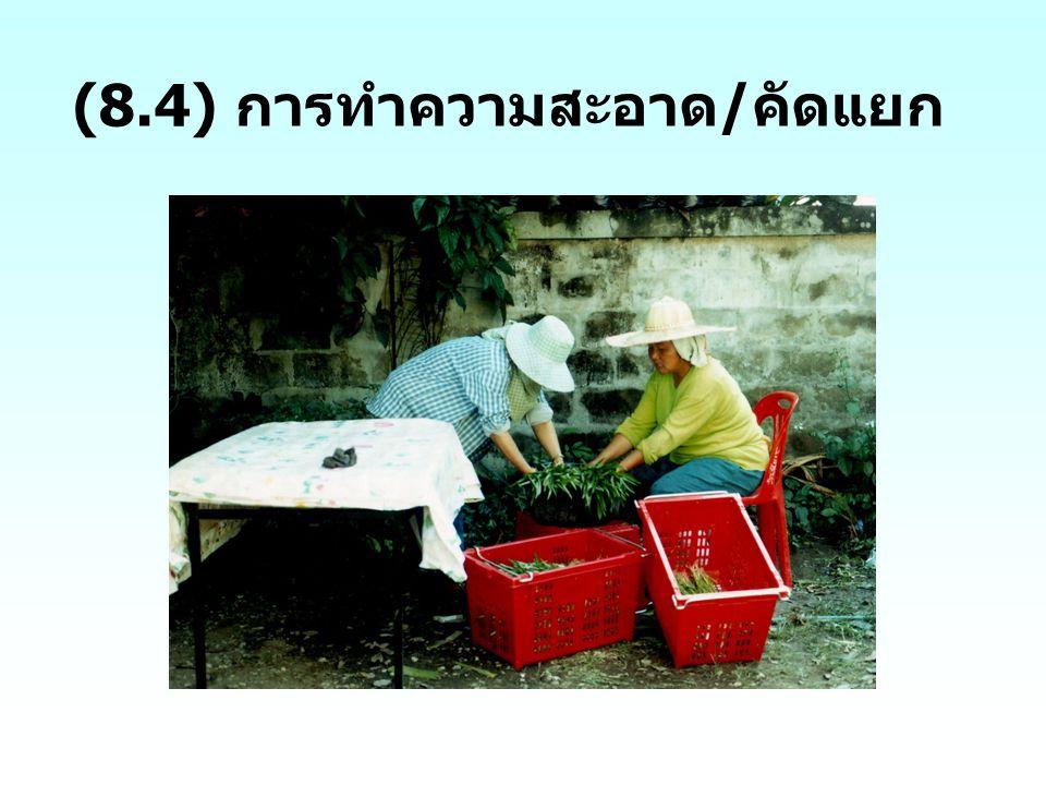 (8.4) การทำความสะอาด/คัดแยก