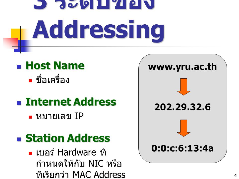 3 ระดับของ Addressing Host Name Internet Address Station Address