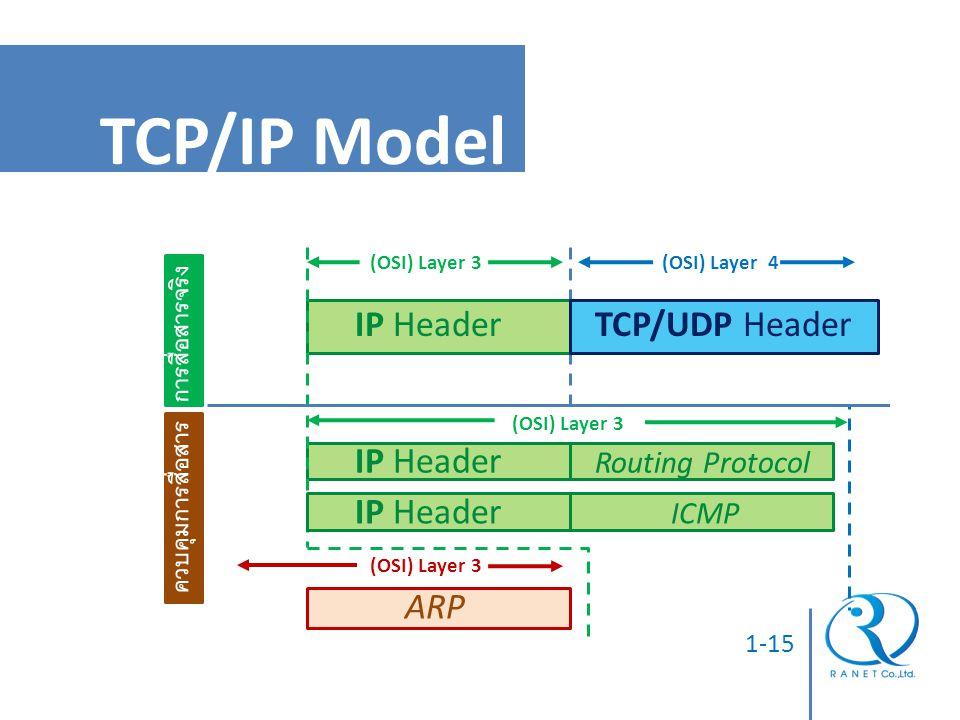 TCP/IP Model IP Header TCP/UDP Header ARP การสื่อสารจริง