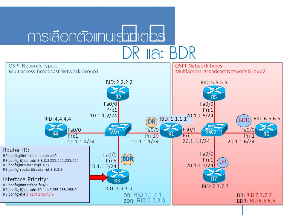 DR และ BDR การเลือกตัวแทนเราท์เตอร์ 11-13 Router ID: BDR DR