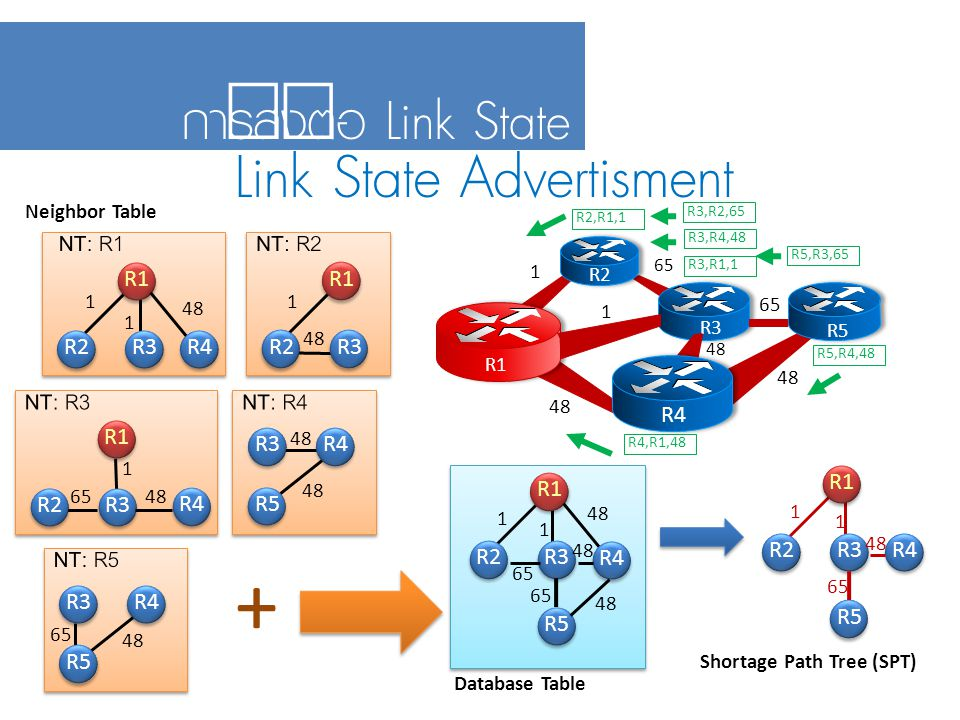 + Link State Advertisment การส่งต่อ Link State NT: R1 NT: R2 NT: R3