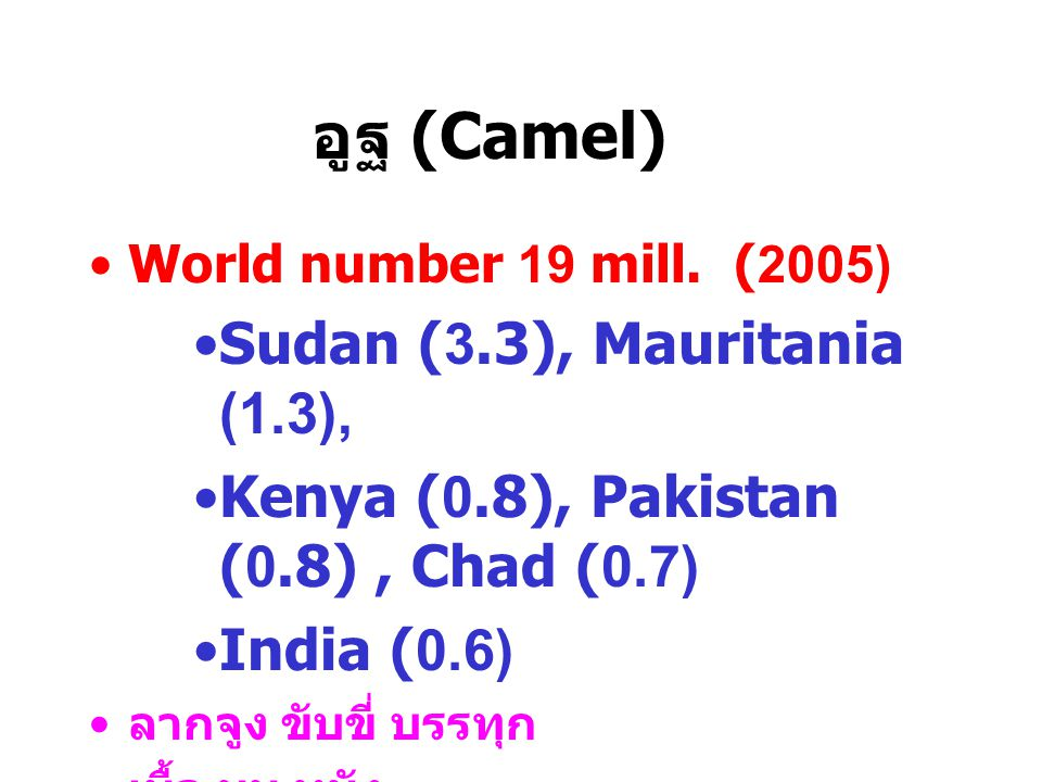 อูฐ (Camel) Sudan (3.3), Mauritania (1.3),