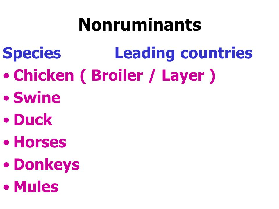 Nonruminants Species Leading countries Chicken ( Broiler / Layer )
