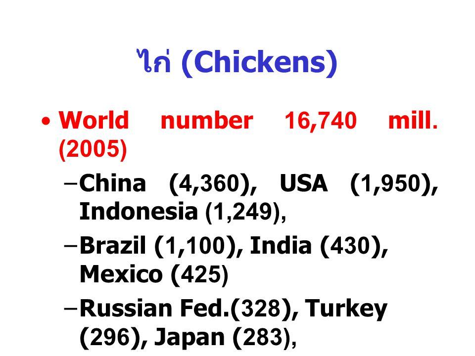 ไก่ (Chickens) World number 16,740 mill. (2005)