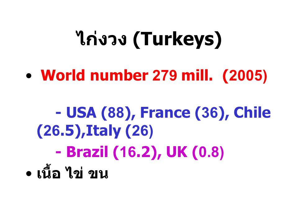 ไก่งวง (Turkeys) World number 279 mill. (2005)