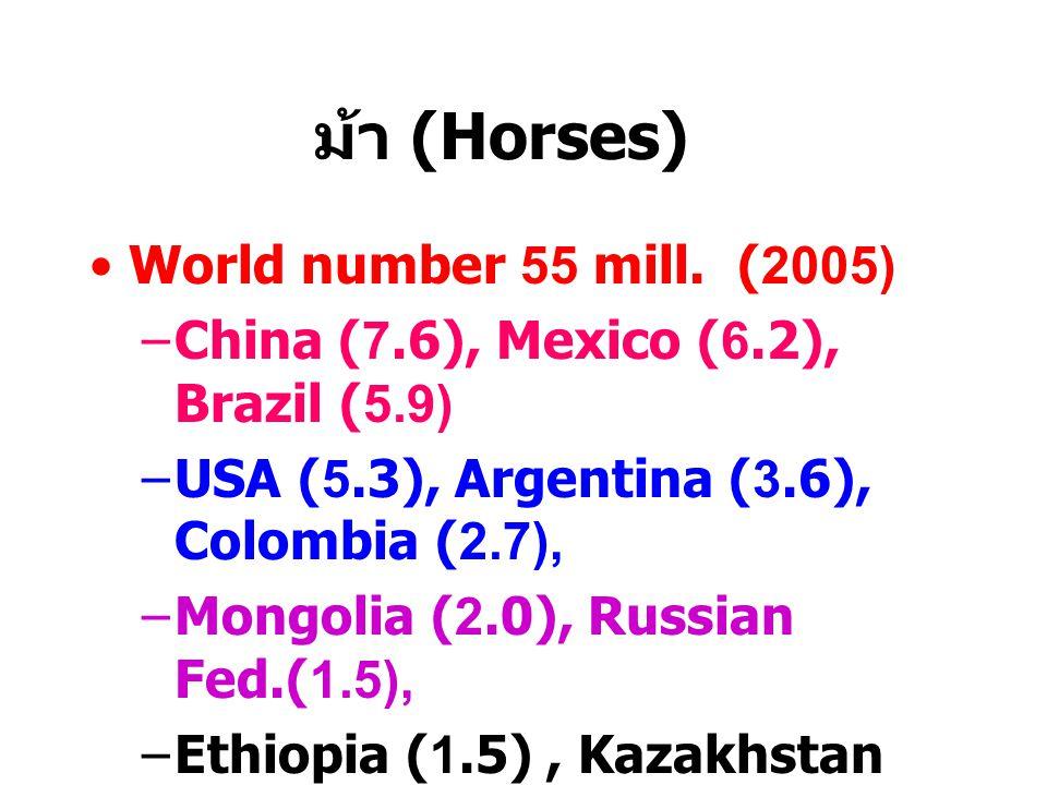 ม้า (Horses) World number 55 mill. (2005)