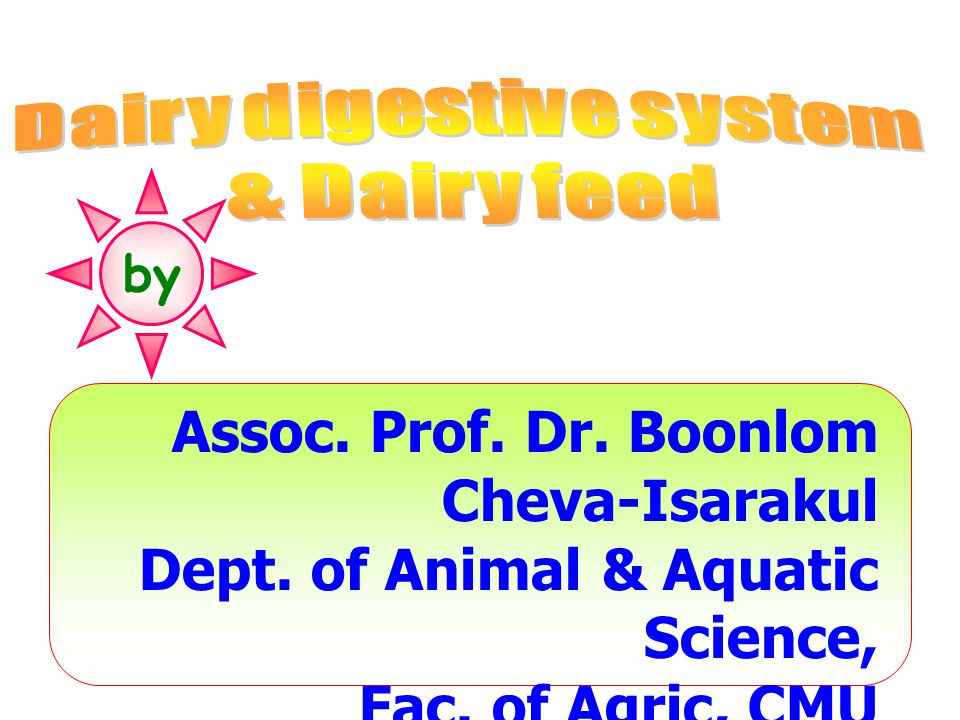 Dairy digestive system