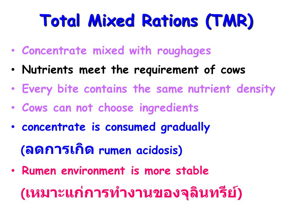 Total Mixed Rations (TMR)