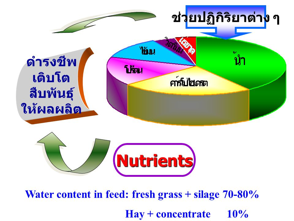 Water content in feed: fresh grass + silage 70-80%