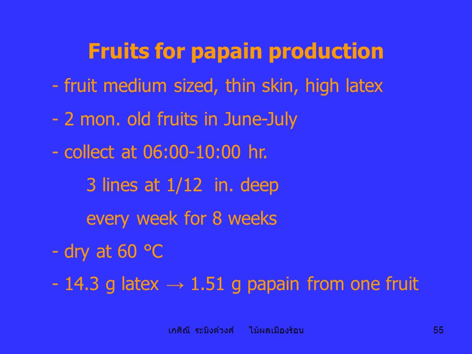 Fruits for papain production
