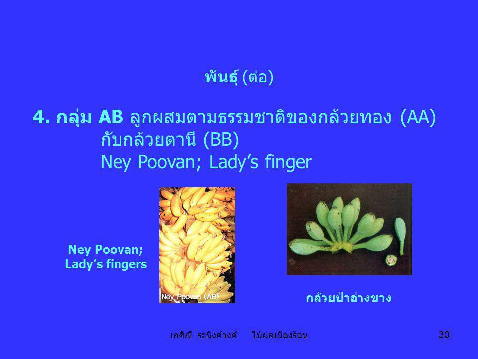 Ney Poovan; Lady's fingers