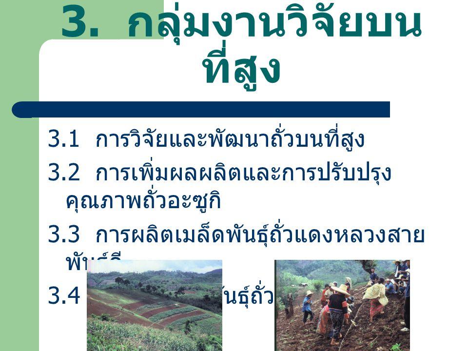 3. กลุ่มงานวิจัยบนที่สูง