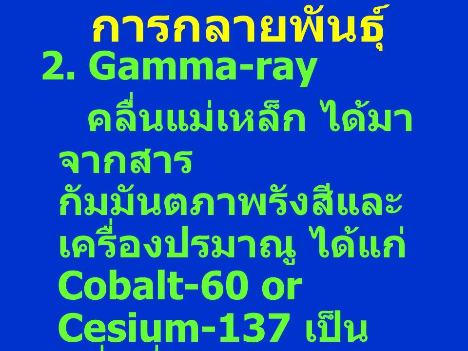 การกลายพันธุ์ 2. Gamma-ray