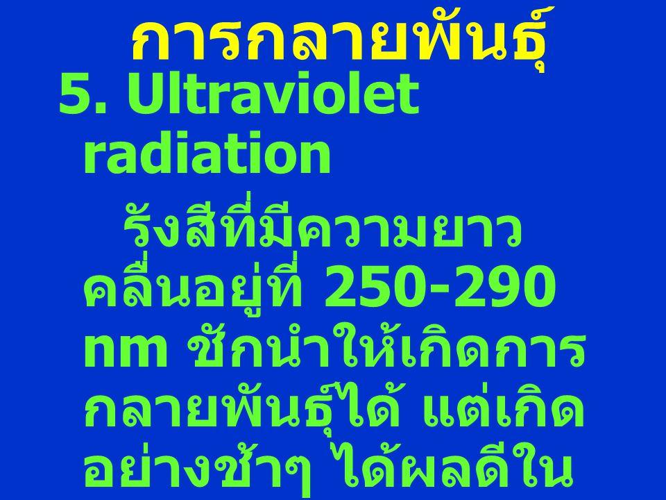 การกลายพันธุ์ 5. Ultraviolet radiation