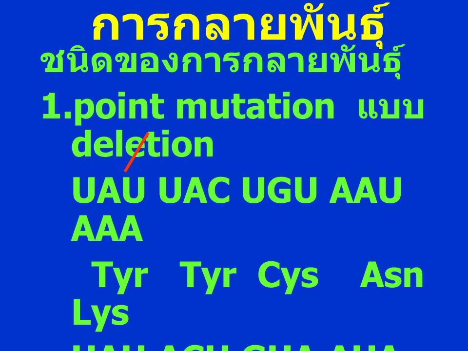 การกลายพันธุ์ ชนิดของการกลายพันธุ์ point mutation แบบ deletion