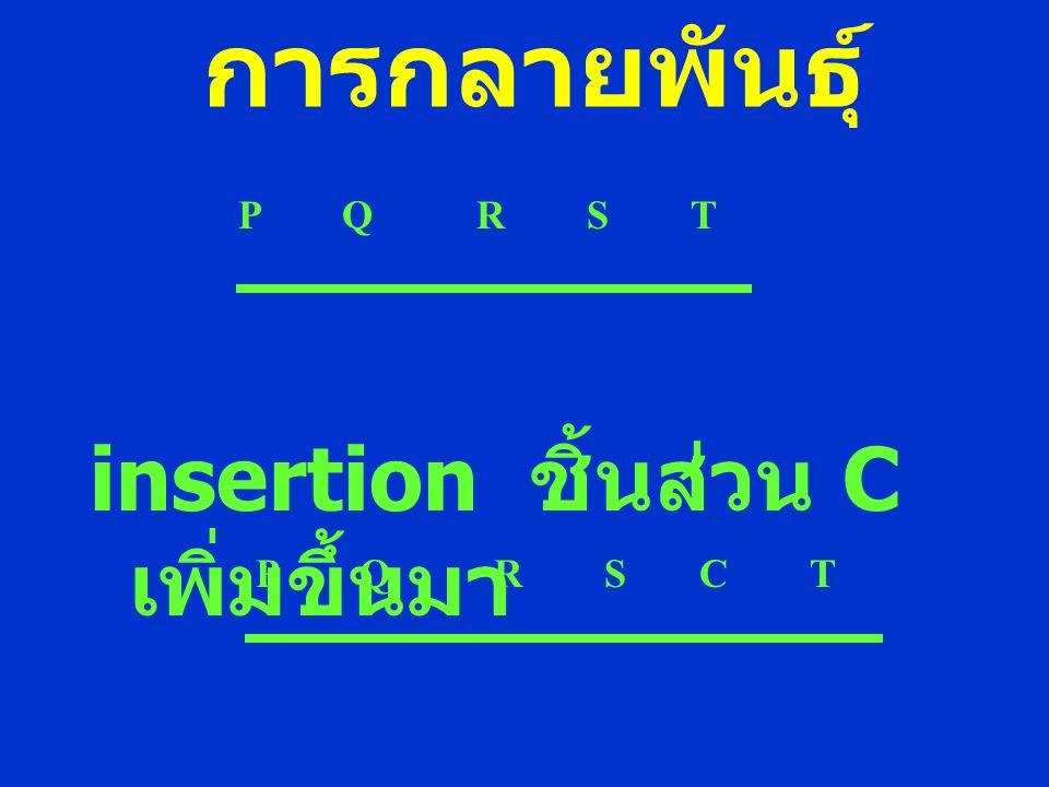 การกลายพันธุ์ insertion ชิ้นส่วน C เพิ่มขึ้นมา. P Q R S T.