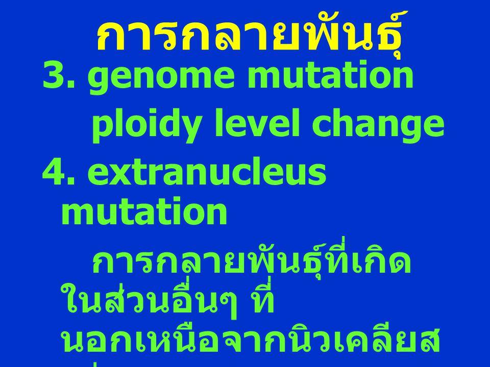 การกลายพันธุ์ 3. genome mutation ploidy level change