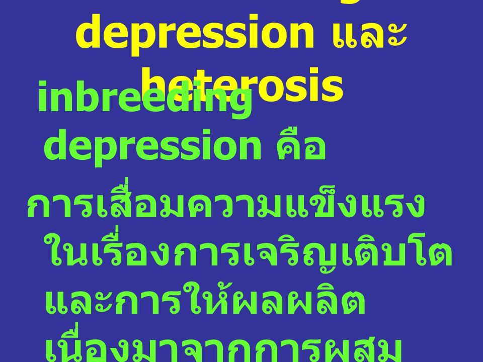 Inbreeding depression และ heterosis