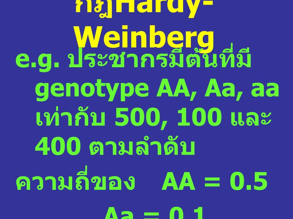 กฎHardy-Weinberg e.g. ประชากรมีต้นที่มีgenotype AA, Aa, aa เท่ากับ 500, 100 และ 400 ตามลำดับ. ความถี่ของ AA = 0.5.