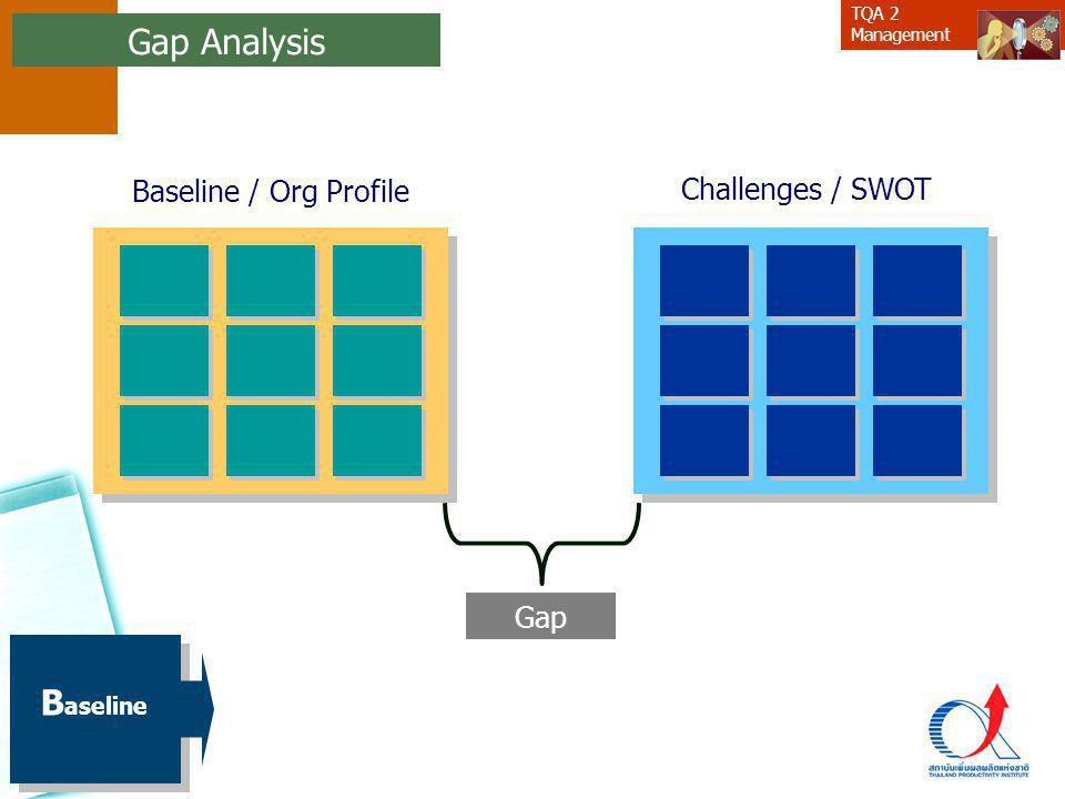 Gap Analysis Baseline / Org Profile Challenges / SWOT Gap Baseline 24