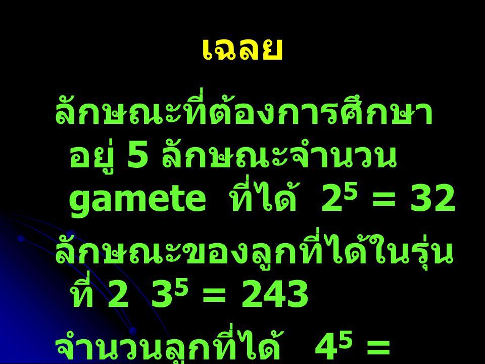 เฉลย ลักษณะที่ต้องการศึกษาอยู่ 5 ลักษณะจำนวน gamete ที่ได้ 25 = 32. ลักษณะของลูกที่ได้ในรุ่นที่ 2 35 = 243.