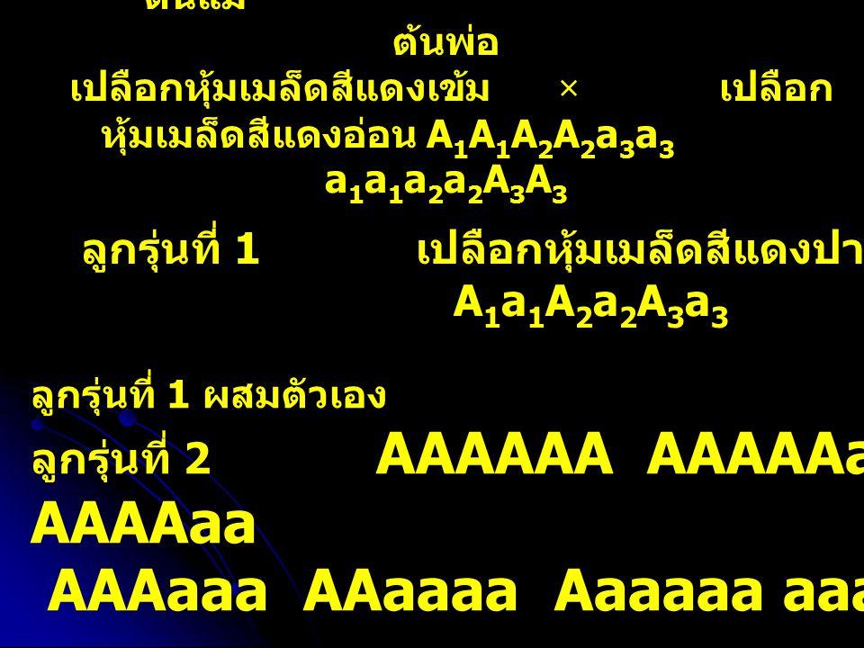 AAAaaa AAaaaa Aaaaaa aaaaaa