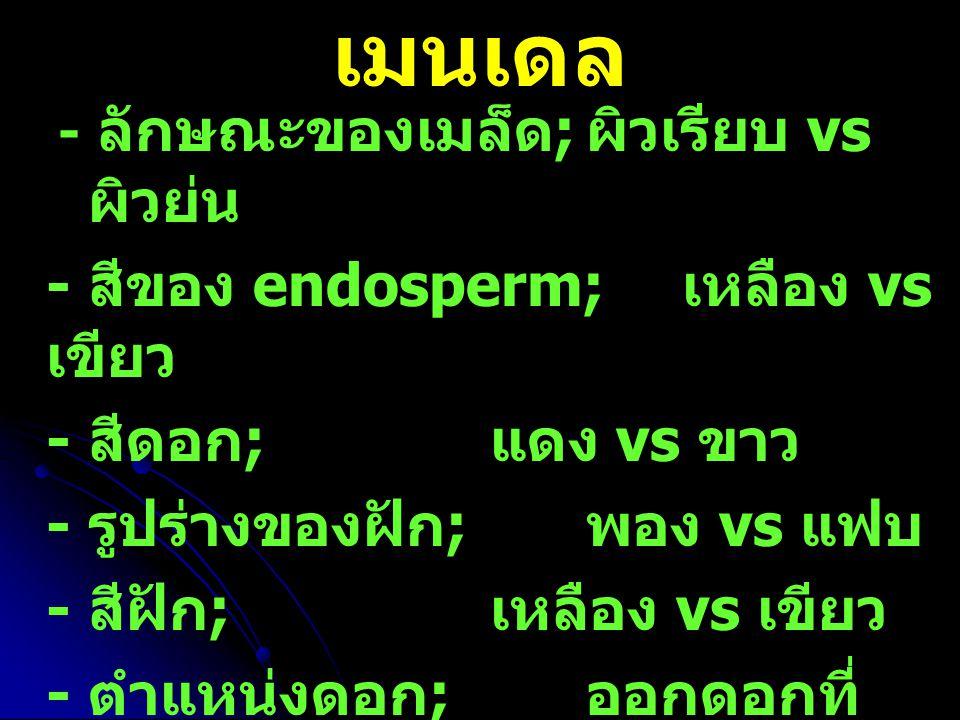 เมนเดล - สีของ endosperm; เหลือง vs เขียว - สีดอก; แดง vs ขาว