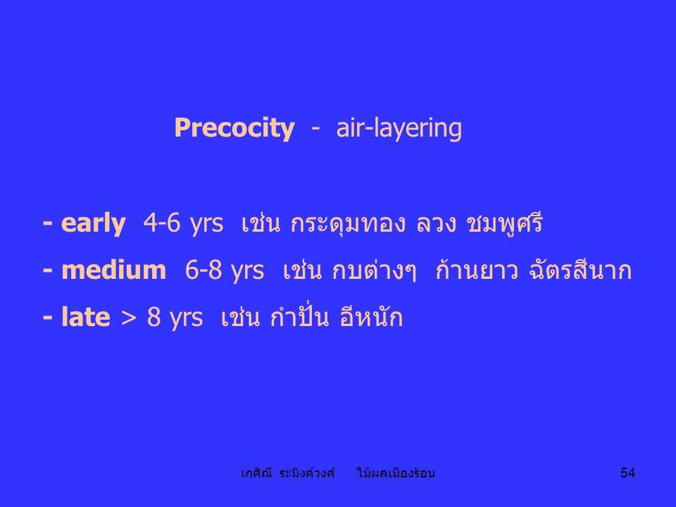 Precocity - air-layering