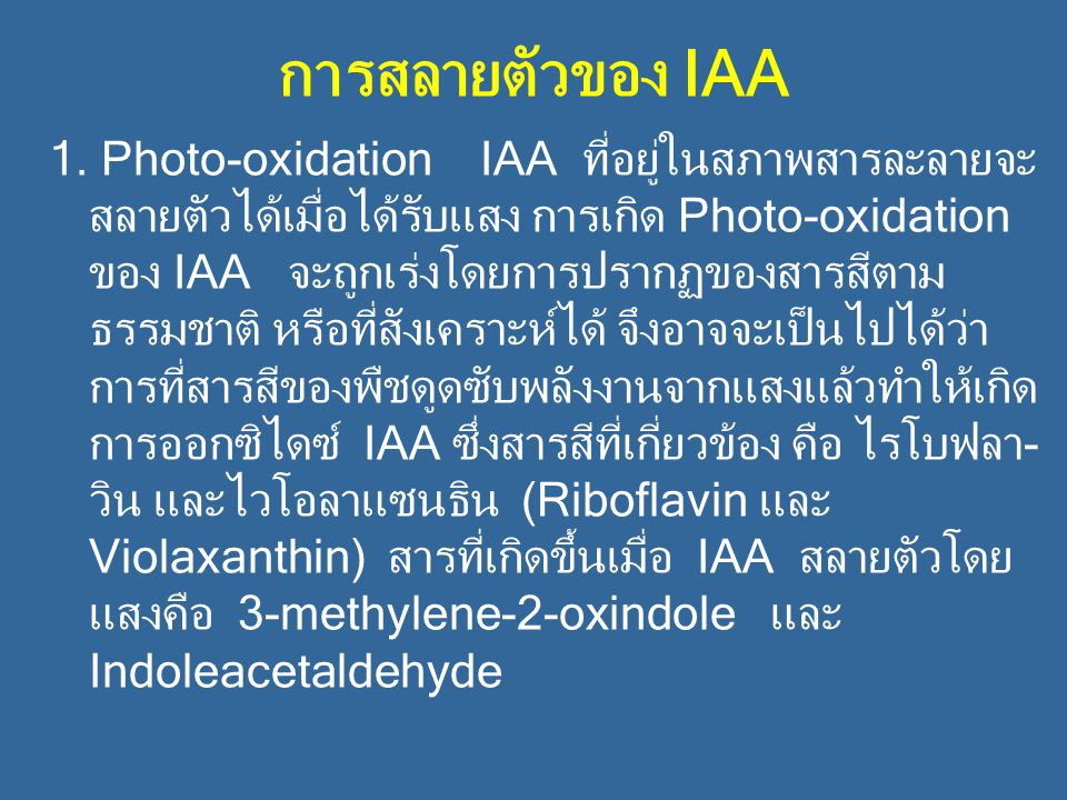 การสลายตัวของ IAA