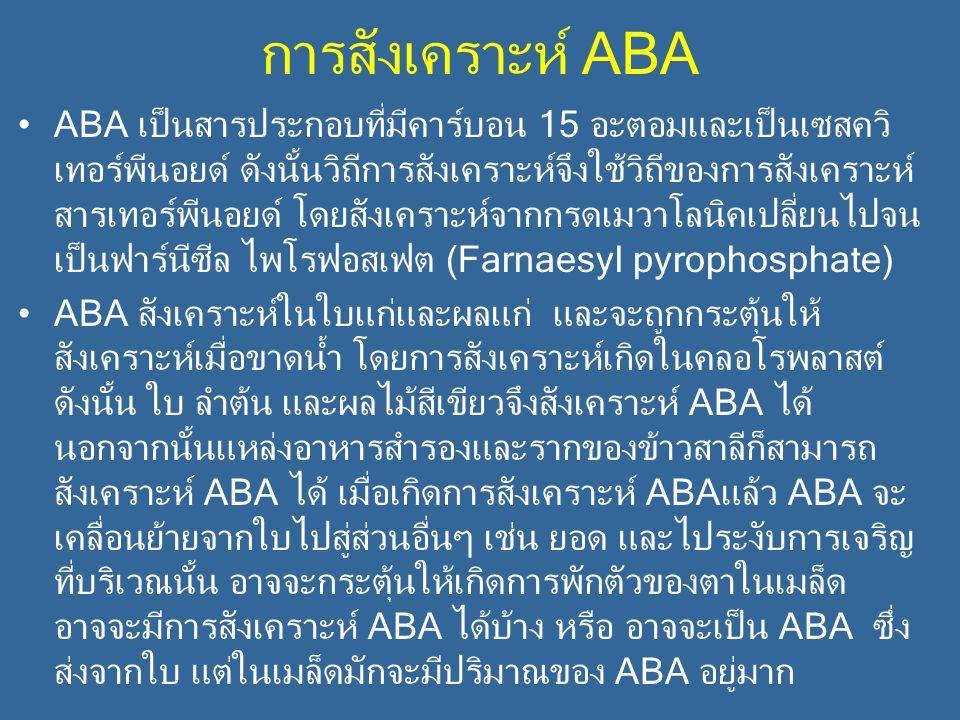 การสังเคราะห์ ABA