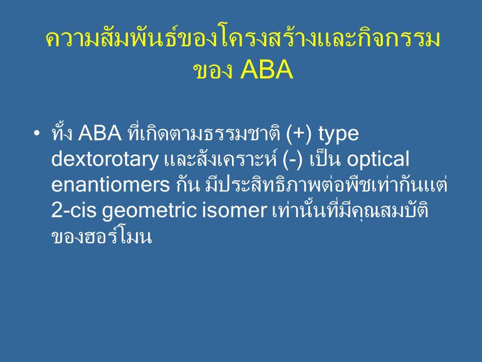 ความสัมพันธ์ของโครงสร้างและกิจกรรมของ ABA