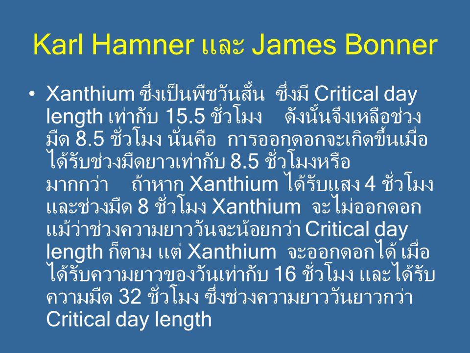 Karl Hamner และ James Bonner