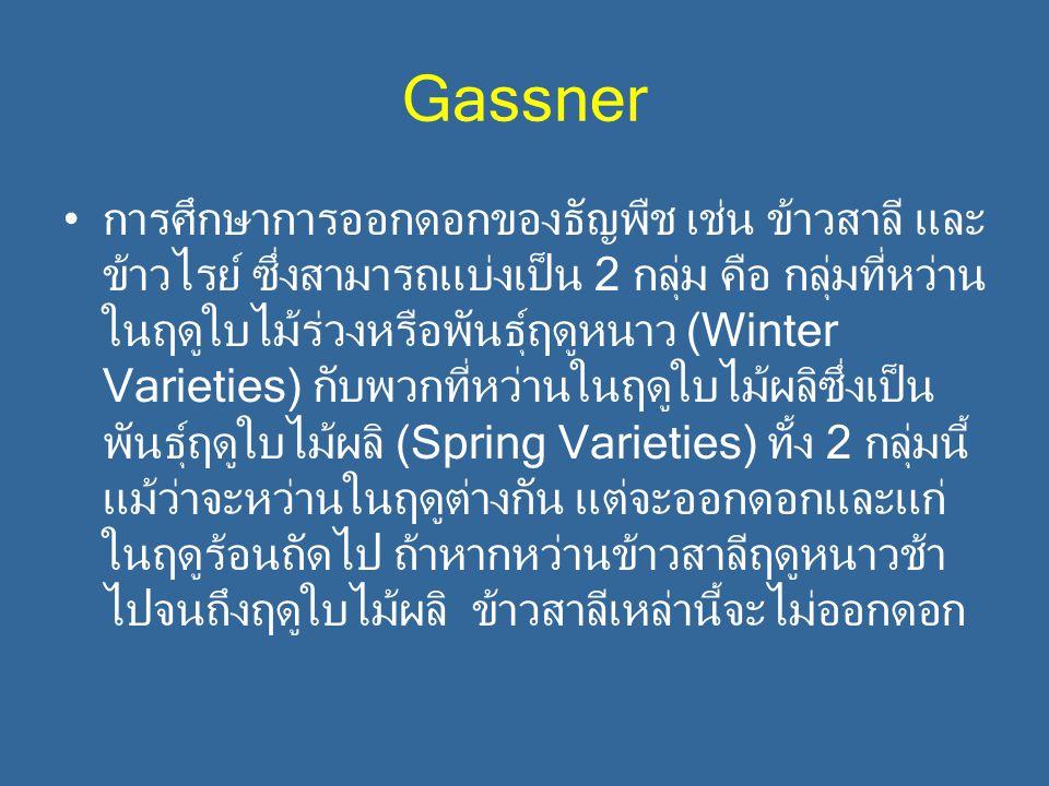 Gassner