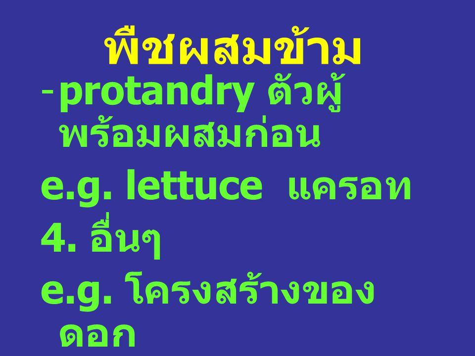พืชผสมข้าม protandry ตัวผู้พร้อมผสมก่อน e.g. lettuce แครอท 4. อื่นๆ